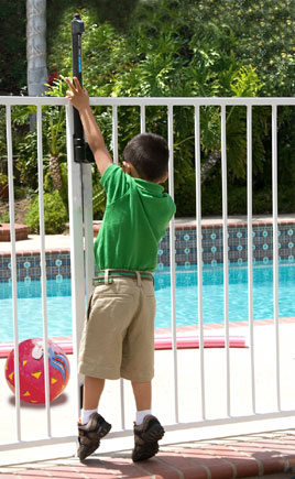 Fence First Pty Ltd Pool Fencing Adelaide Regulations